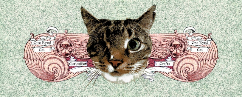 One Eyed Cat Curiosities.jpg