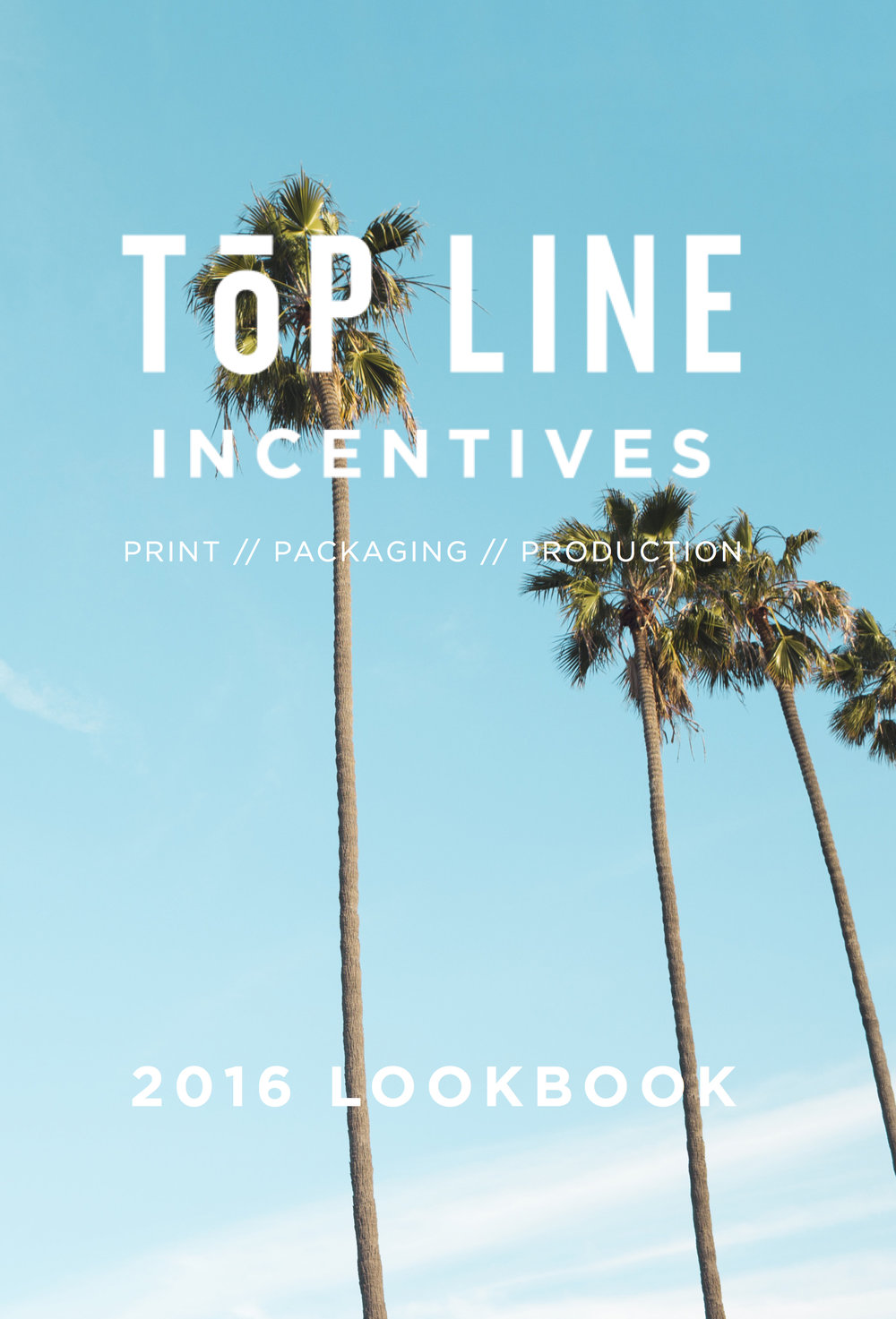 Top Line Incentives Lookbook (also designed)