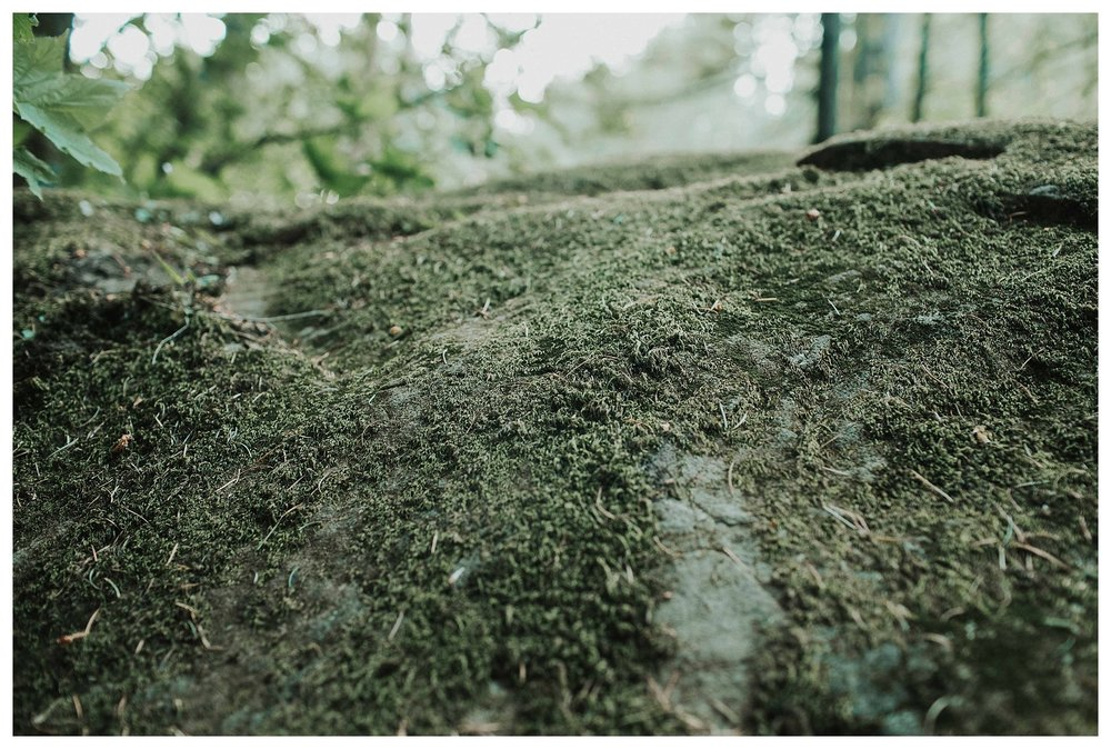 Cloumbia Rive Gorge_0027.jpg