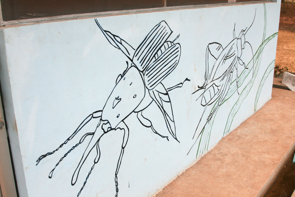 This mural was commissioned by the Food and Agriculture Organization of the United Nations on the insect farm at Vientiane University.