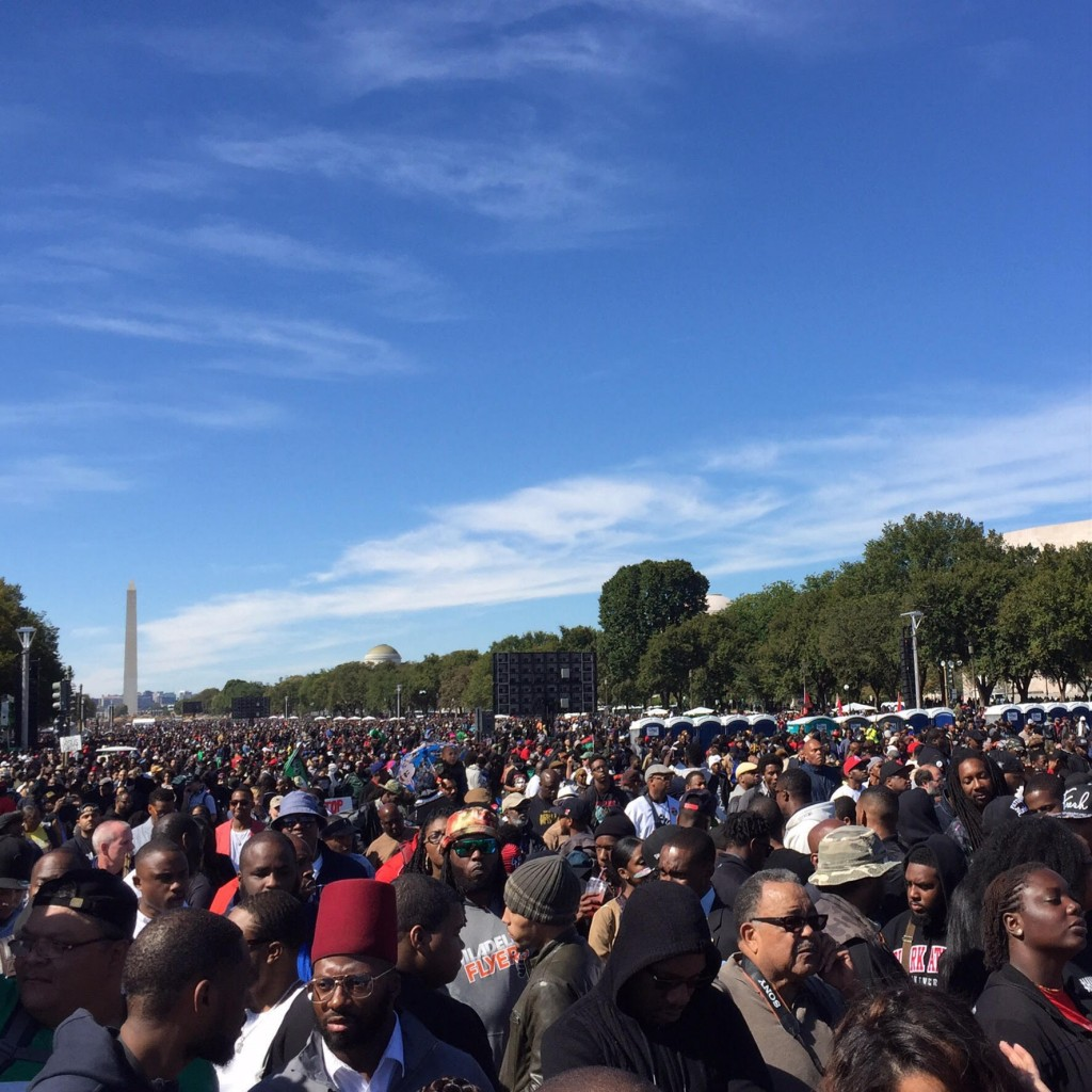 Million Man March 2015 - Crowd of Men