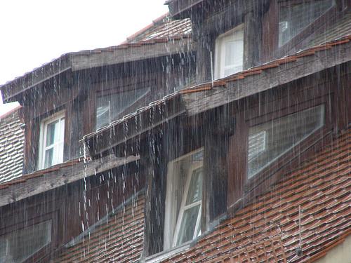 erichferdinand_rainonroof.jpg
