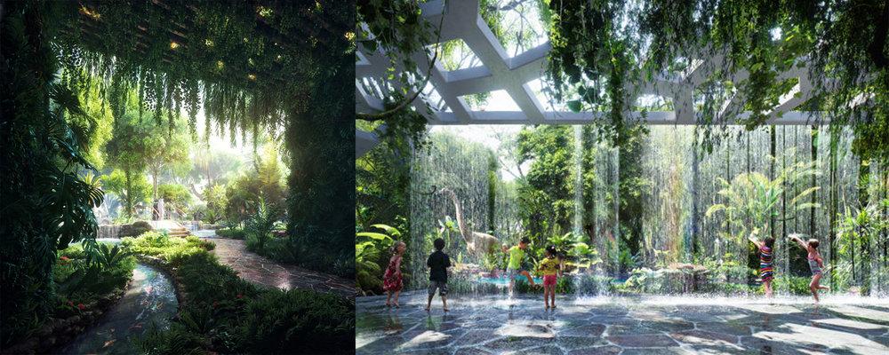 Rainforest and Rain Sensor Visualisation