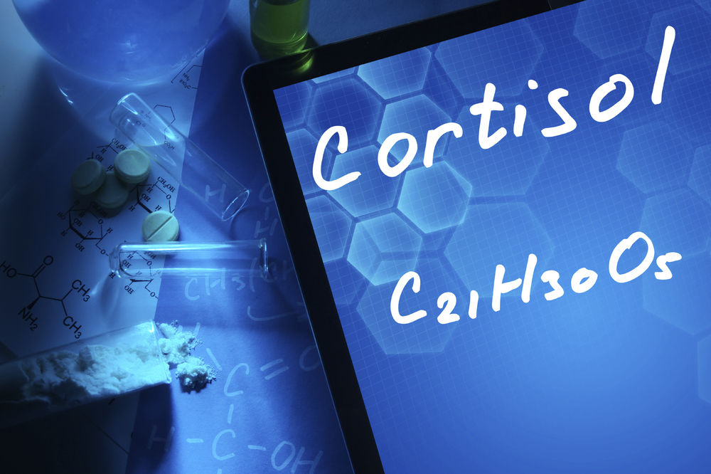 cortisol and the stress response