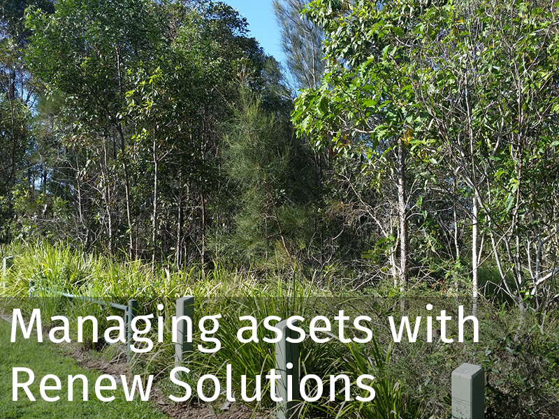 20160121 Renew assets.jpg