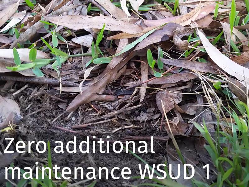 20150102 0043 Zero additional maintenance WSUD 1.jpg