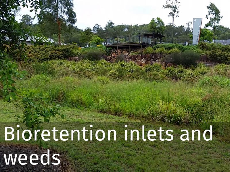 20150102 0050 Bioretention inlets and weeds.jpg