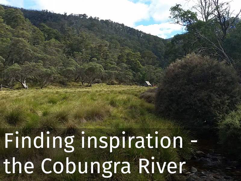 20150102 0051 Finding inspiration_the Cobungra River.jpg