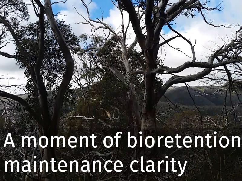 20150102 0053 A moment of bioretention maintenance clarity.jpg