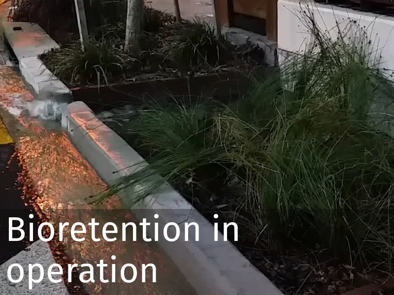 20150102 0063 Bioretention in operation.jpg