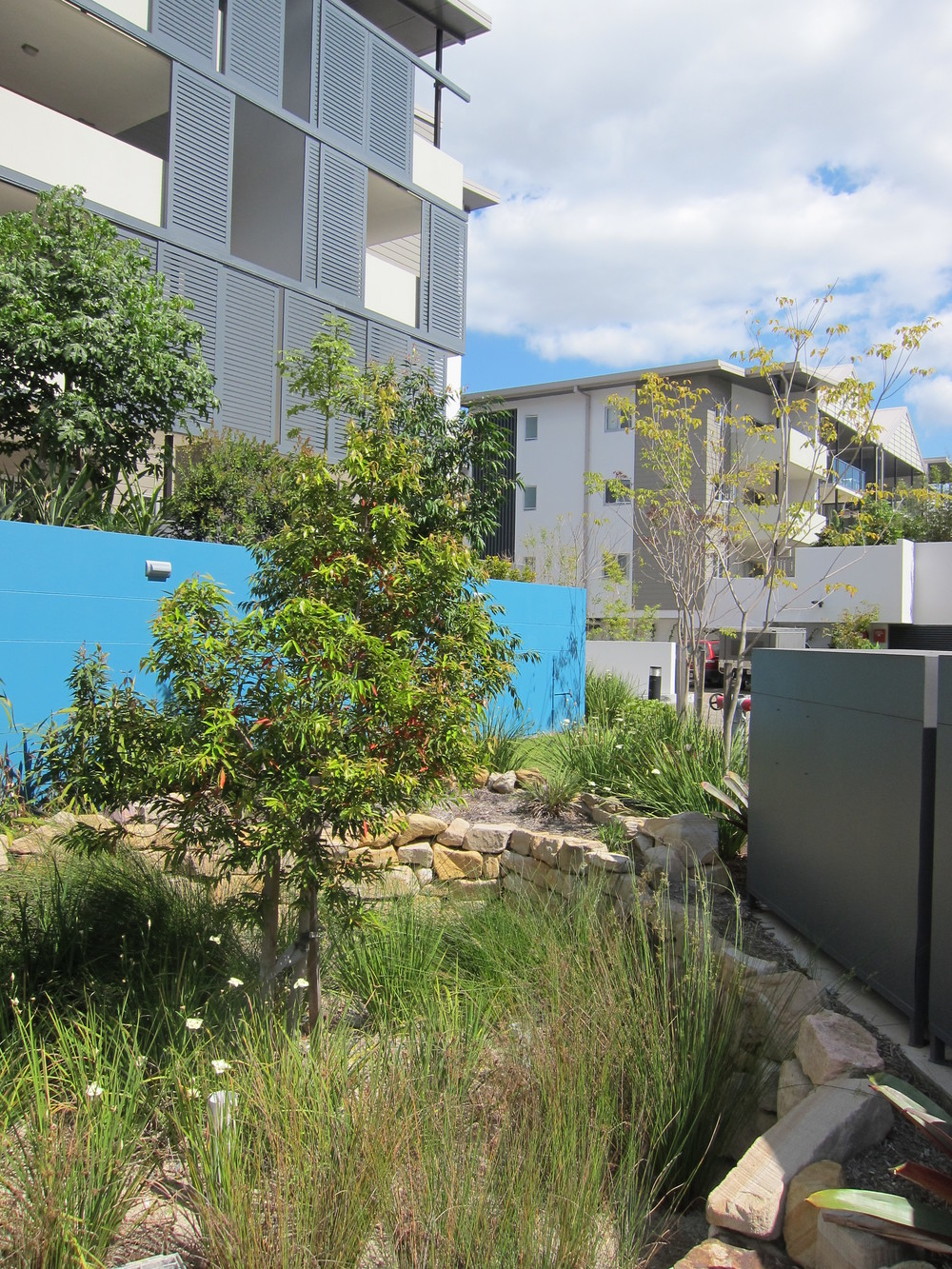 Annerley Road Bioretention System
