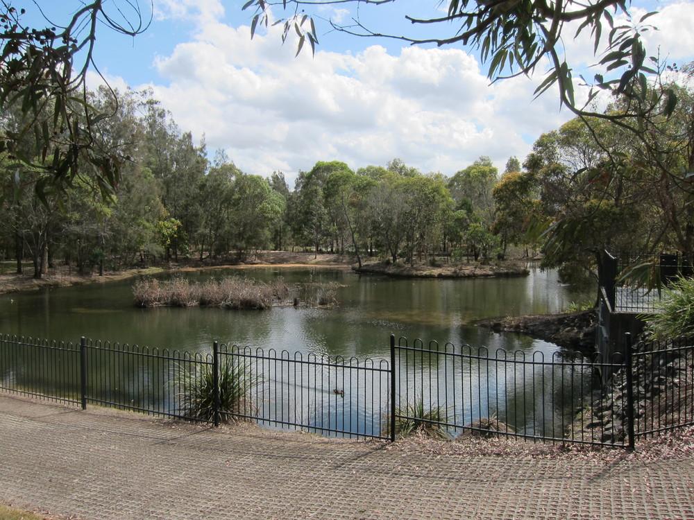 Flinders Esplanade Wetland