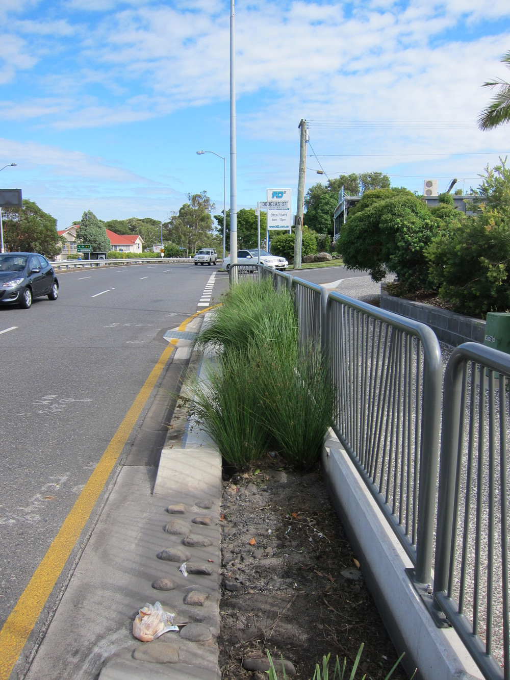 Logan Rd Bioretention System