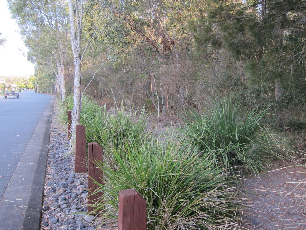 Nungatta Circuit Bioretention System