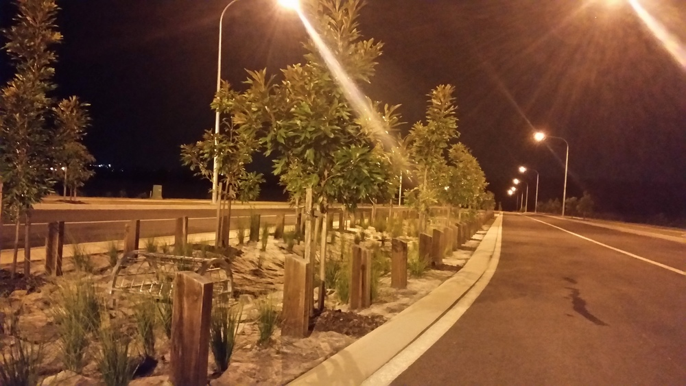 Stapylton Rd Bioretention System