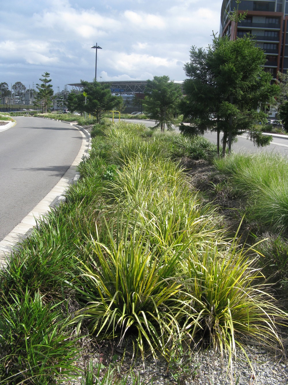 King Arthur Tce Bioretention System