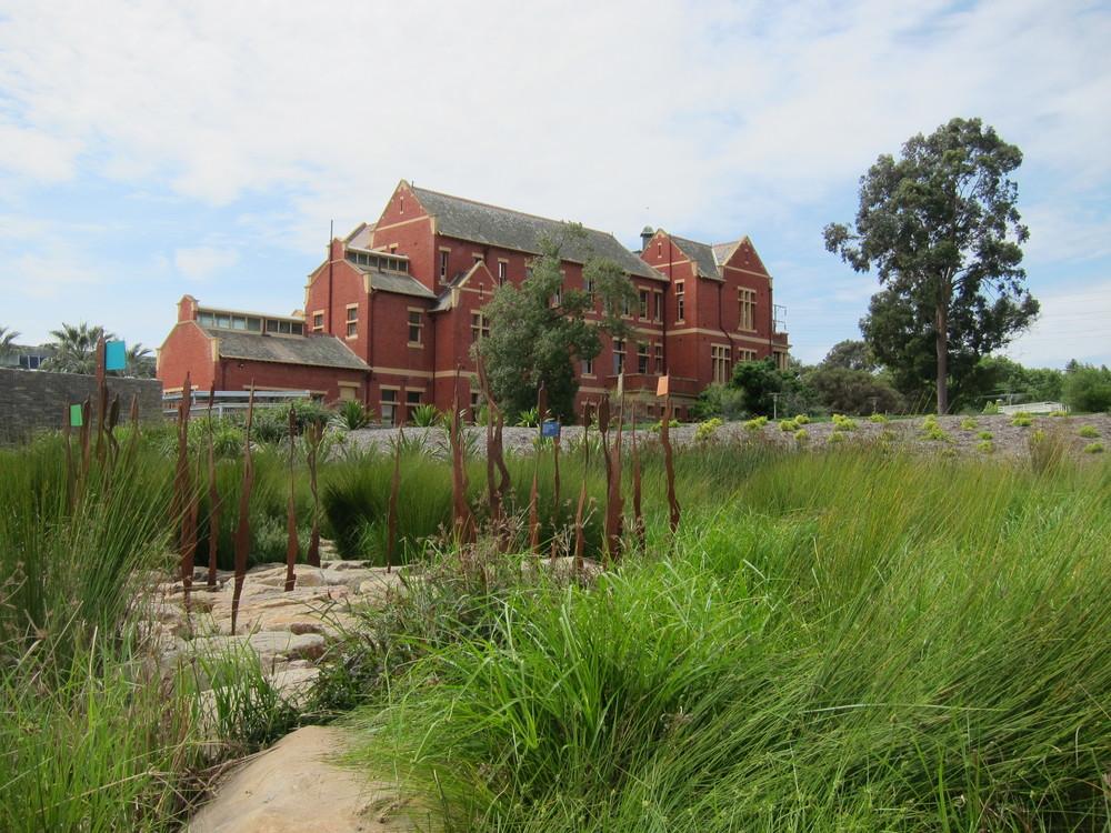 Adelaide Botanic Gardens Stormwater Harvesting Wetland
