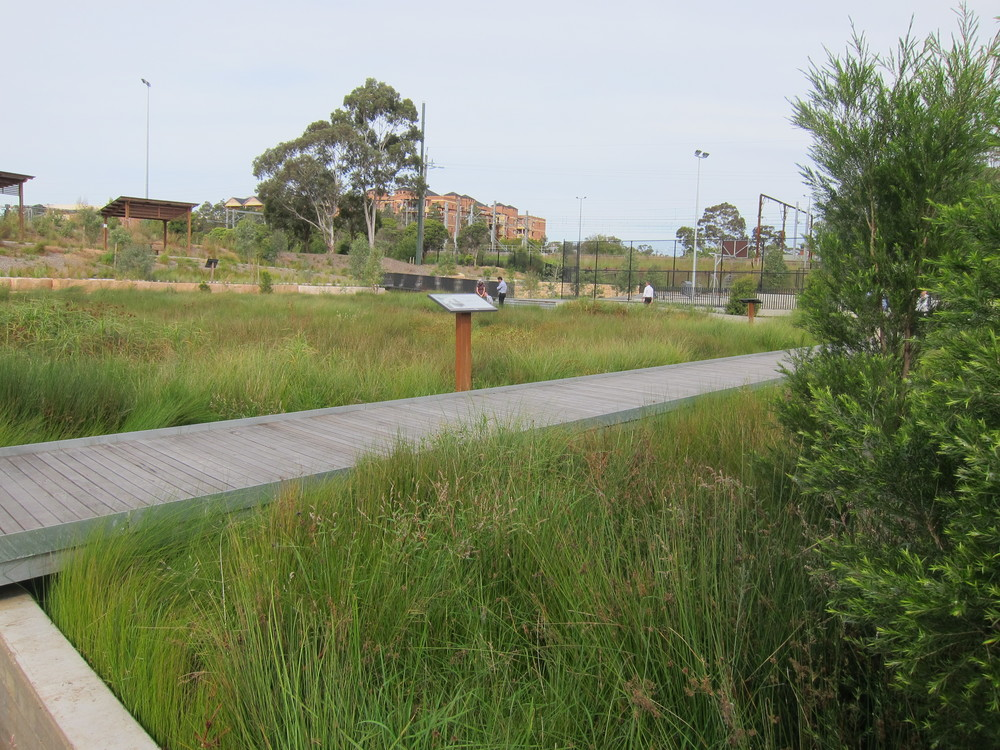 Blacktown Showgrounds Bioretention System