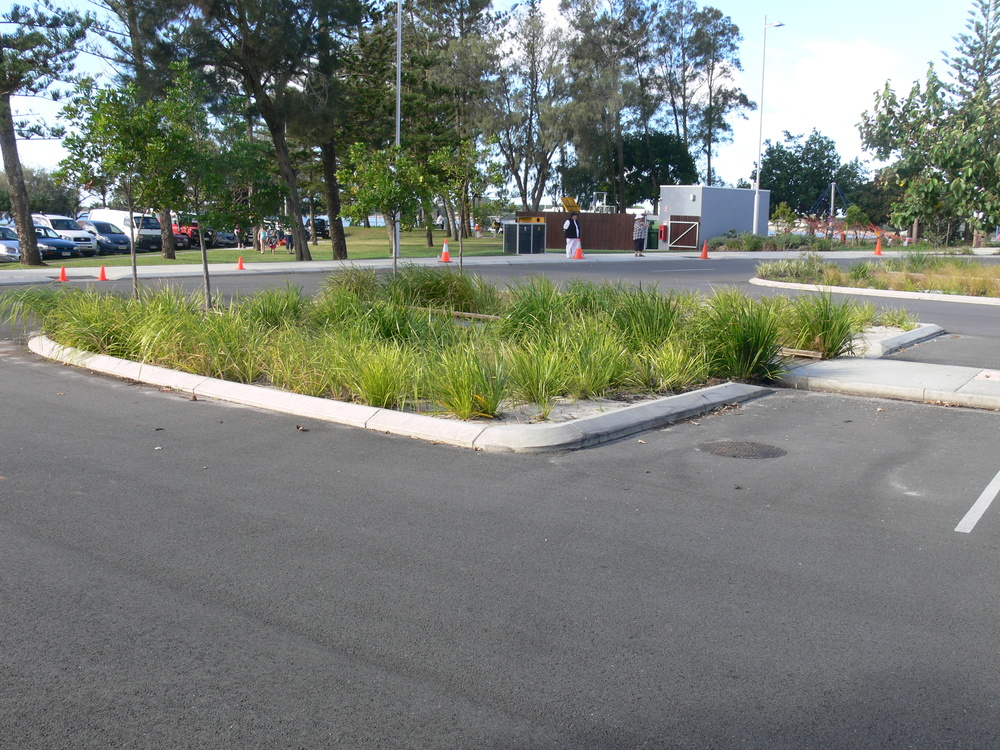 Southport Broadwater Parklands Bioretention System