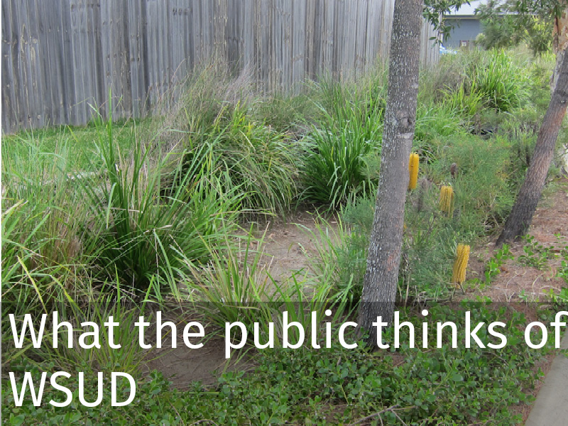 20150102 0071 What the public thinks of WSUD.jpg