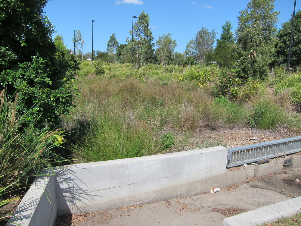 Mt Samson Rd Bioretention System (South West)