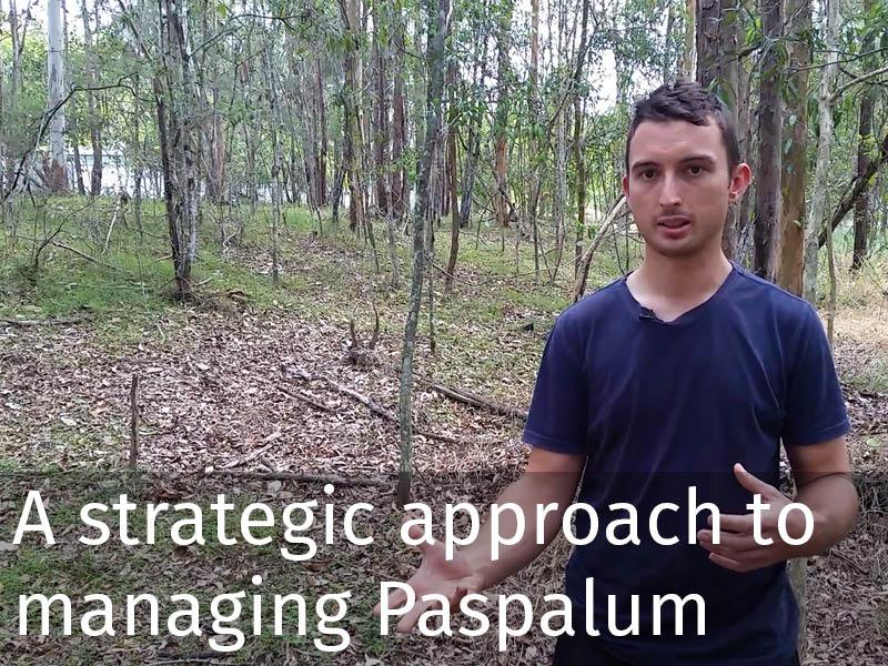 20150102 0078 A strategic approach to managing Paspalum.jpg