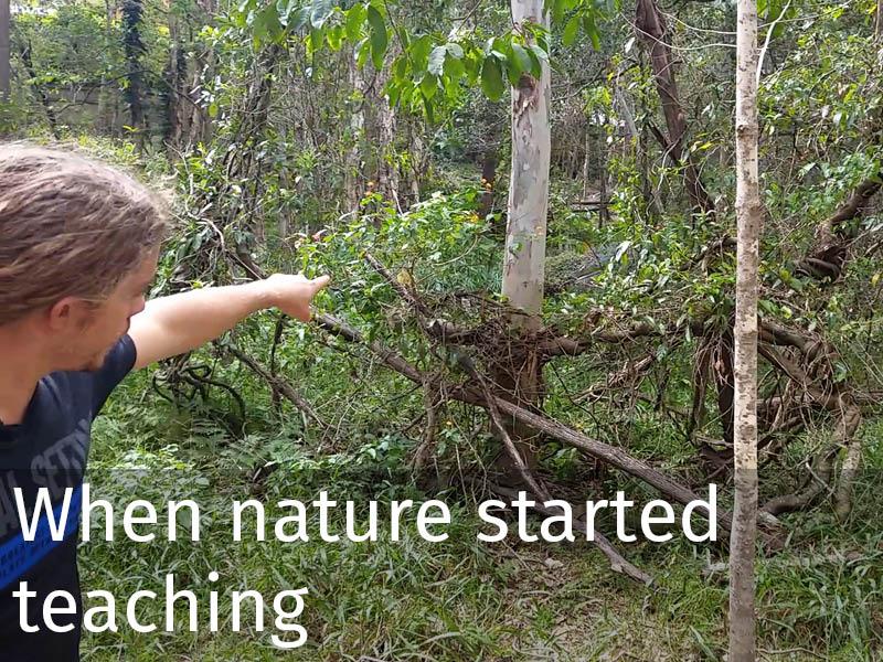 20150102 0084 When nature started teaching.jpg