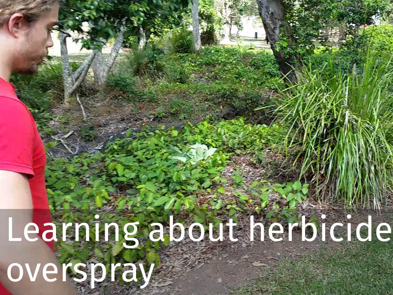 20150102 0086 Learning about herbicide overspray.jpg
