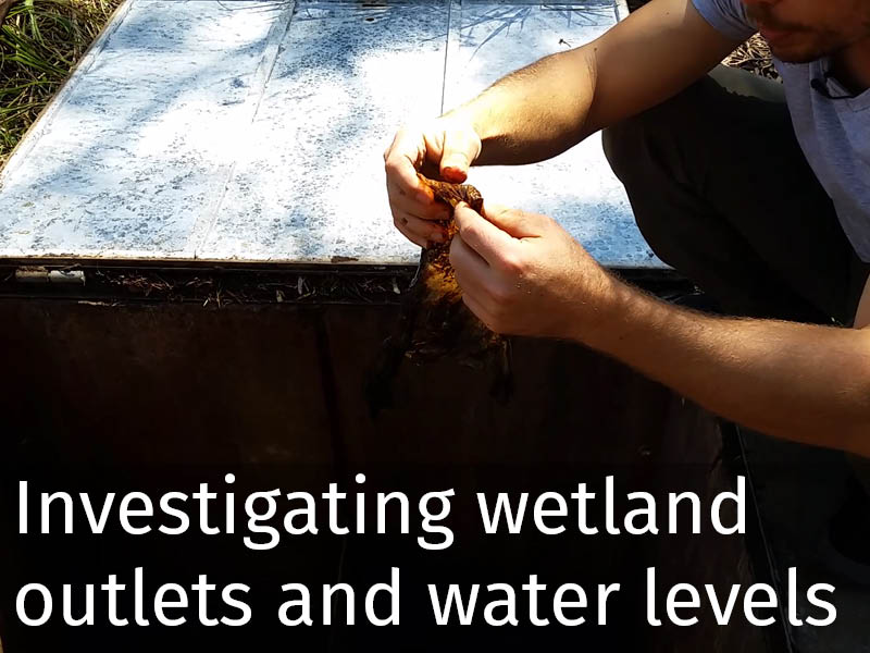 20150102 0092 Investigating wetland outlets and water levels.jpg