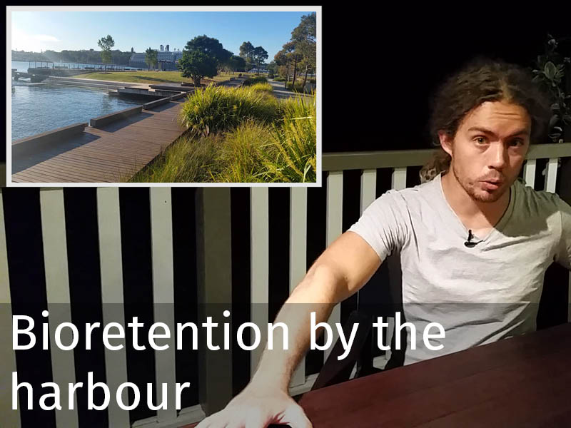 20150102 0105 Bioretention by the harbour.jpg