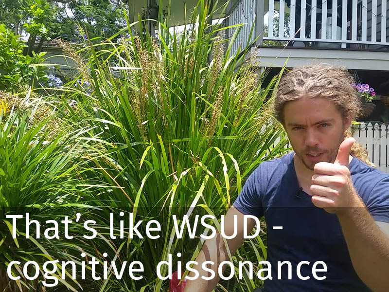 20150102 0114 That's like WSUD - cognitive dissonance.jpg