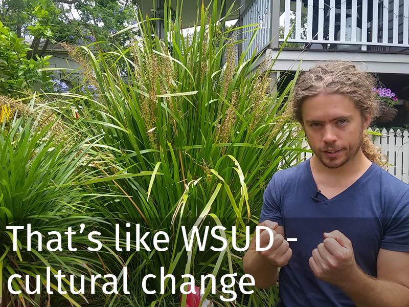 20150102 0115 That's like WSUD - cultural change.jpg