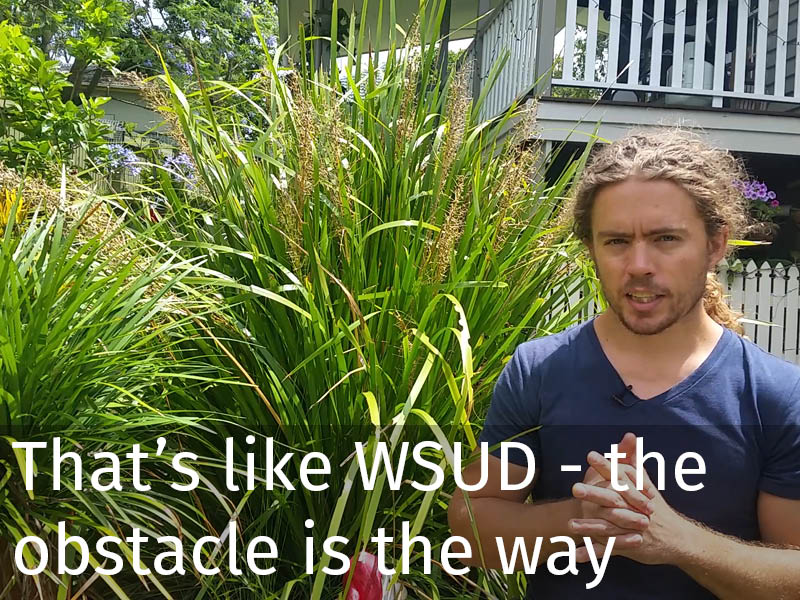20150102 0116 That's like WSUD - the obstacle is the way.jpg