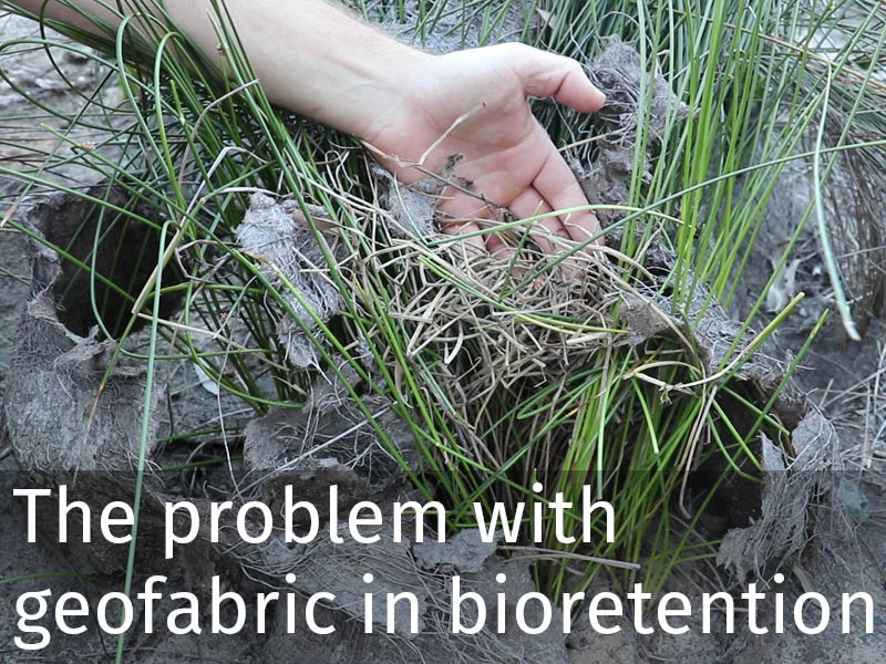 20150102 0169 The problem with geofabric in bioretention.jpg