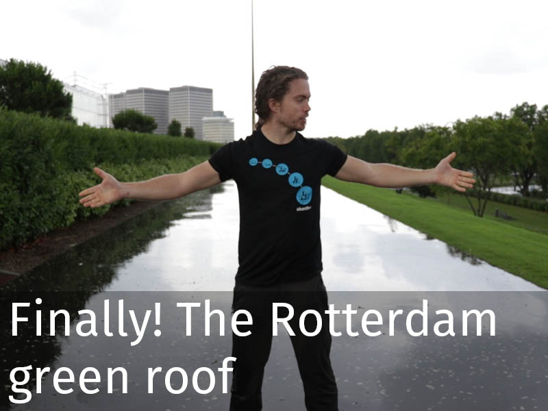 20150102 0177 Finally! The Rotterdam green roof.jpg