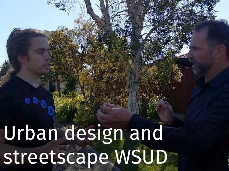 20150102 0186 Urban design and streetscape WSUD.jpg