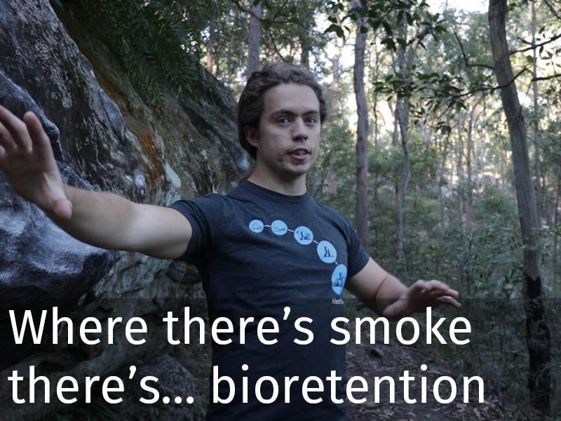 20150102 0189 Where there's smoke there's... bioretention.jpg