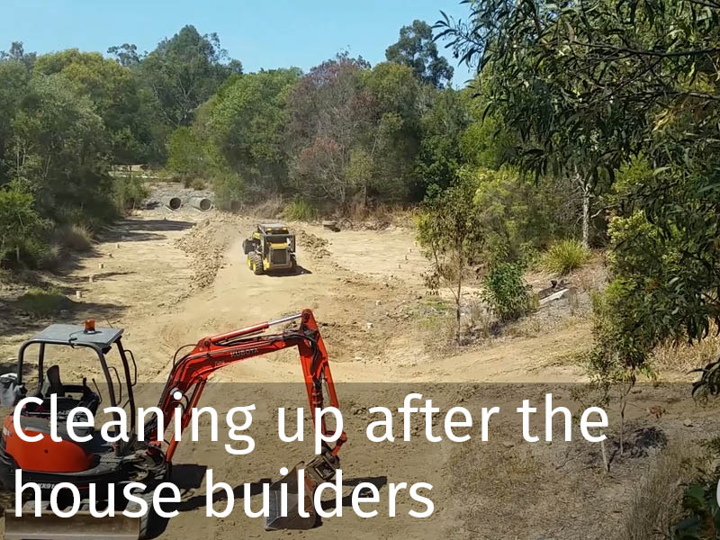 20150102 0195 Cleaning up after the house builders.jpg