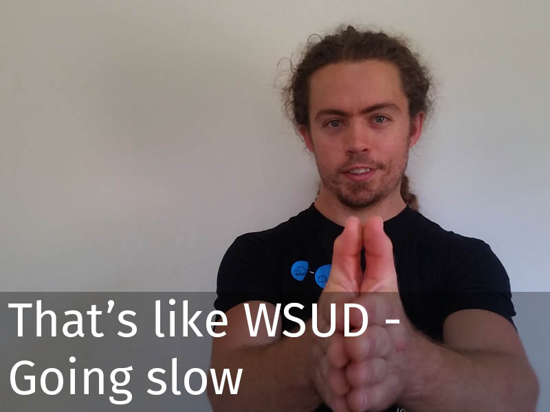 20150102 0198 That's like WSUD - Going slow.jpg