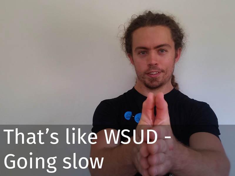 20150102 0198 That's like WSUD - Going slow.jpg