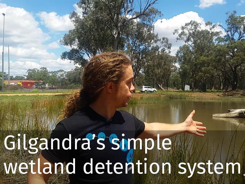 20150102 0202 Gilgandra's simple wetland detention system.jpg