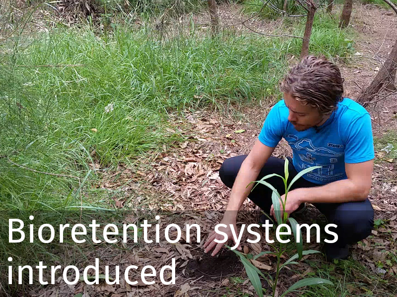 20150102 0001 Bioretention systems introduced.jpg