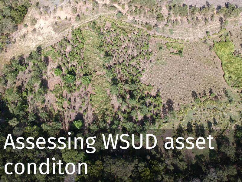 20190315 Assessing WSUD assets.jpg