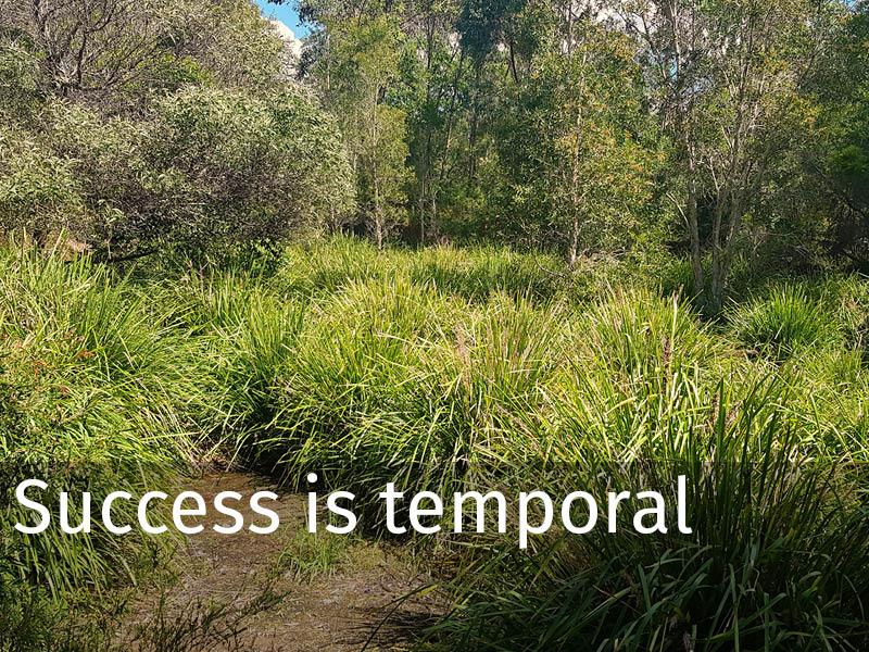 20150102 0273 Success is temporal.jpg