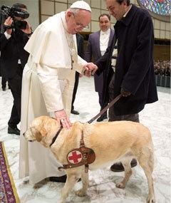 pope-dog