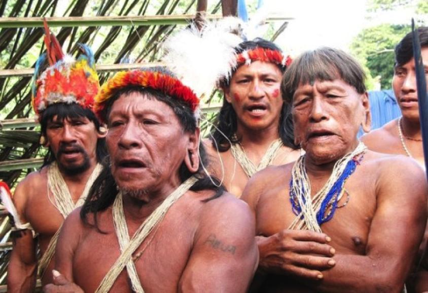 ecuador-rainforest
