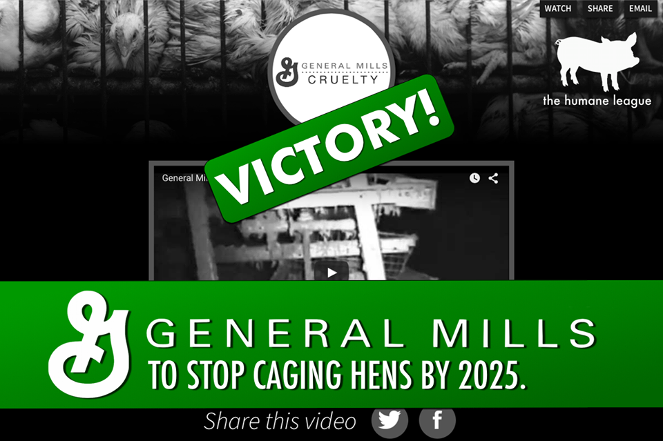 general-mills-cage-free-hens