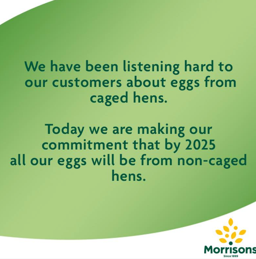 Free-range: All major supermarkets will sell eggs from non caged eggs by 2025 thanks to Lucy's campaigning