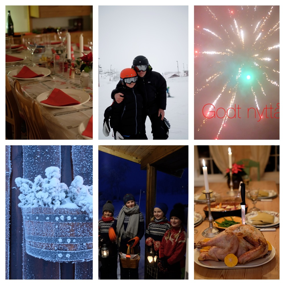 Family Christmas dinner, skiing, new year firework, frozen plant, kids singing for sweets and new year eve dinner