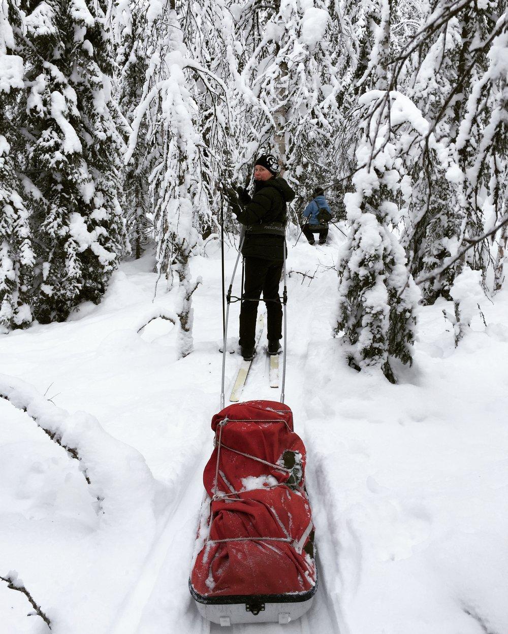 Sirpa in winter wonderland